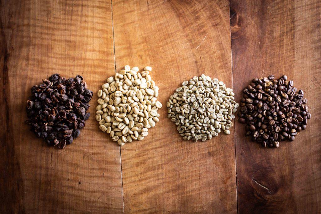 Kaffeekirsche, geschält, gehäutet und geröstet